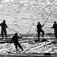 深川から木場へ。運河と共に栄えた江戸文化